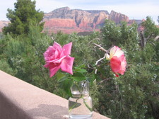 102654_Porch and Roses.JPG