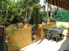 Terrasse-jardin//Terrace-garden