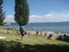 Madison Park beach-Lake Washington: Sunny Seattle--a beach to take the kids in the summer just a few minutes by car from our home