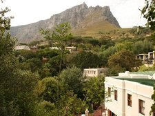 View of Table Mountain from garden