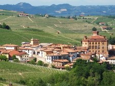 View of Barolo