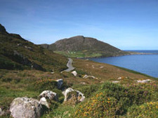 130747_traditional-one-ring-of-beara-m.jpg