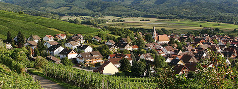 beautiful village of Ehrenkirchen (265m a.s.l.)