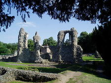 Abbey Ruins