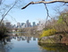 View of midtown from nearby pond in Central Park