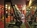 Fitness Center: The fitness center in the building is very good ... it has just about everything you would need. Treadmills ... elliptical machines ... recumbent bicycles ... weight machines ... free weights ... chin-up bar ... and 5 flat-screen TVs with cable. Big windows let in natural daylight.