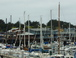 The marina in Monterey