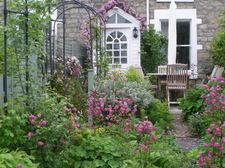 My_Cottage_and_garden_in_Bath.JPG