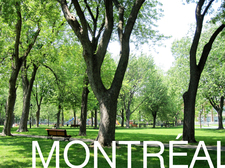 Plateau_Mont-Royal_copie.jpg
