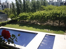 Swimming pool and garden from our balcony