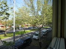 view_from_front_room.JPG