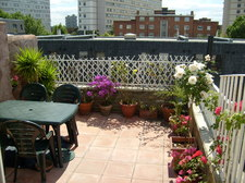 Terrace2.jpg
