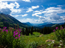 Crested Butte in Summer