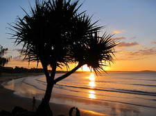 Noosa beach at sunset