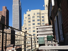 NYC view from terrace.jpg
