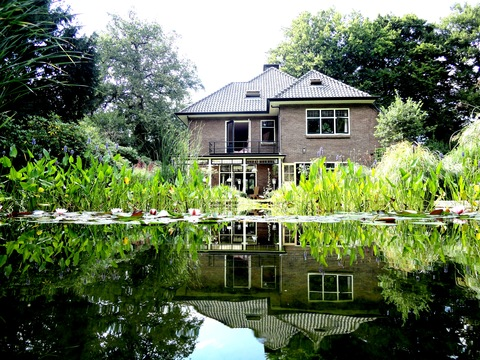 House seen from swimming pond: House from swimming pond