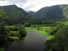 Pan of Waipio