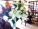 We love to provide flowers!: We love to provide tropical flowers for your enjoyment